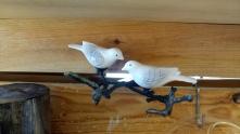 Pássaros1 Laboratório d'Estórias, na Hangar Design Store, CCB